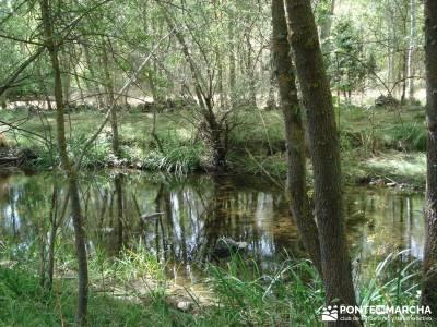 Cañones del Río Cega y  Santa Águeda  – Pedraza;viajes puente de octubre viajes en marzo